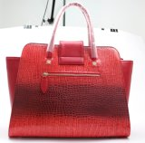 Projetos elegantes volumosos da bolsa para as mulheres luxuosas
