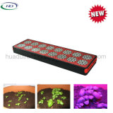 El LED crece ligero con la viruta de 240PCS 3W LED para las hierbas
