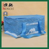 Insulated Outdoor Picnic Ice Lunch Cooler Bags for Cans and Food