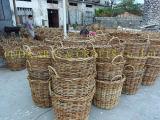 Potenciômetro Handmade natural do jardim do Rattan