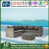 Abrir Weaving moderno del sofá Muebles de jardín (TG-801)