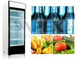 신식 그네 LED 점화를 가진 유리제 문 상인 냉장고