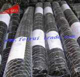 Galvanized Poultry Net / Hexagonal Wire Cages