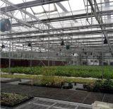 폴리탄산염 헛간 취미 녹색 집