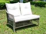 Jeu en osier de meubles de jardin de patio de sofa extérieur de rotin