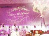 projecteur de Gobo de logo de la lumière DEL de mur du mariage 4500lm