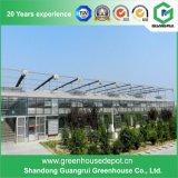 China-Lieferanten-niedrige Kosten-Glasgewächshaus für gewerbliche Nutzung