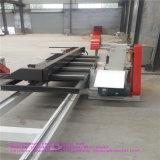 中国のブランドの安い木製の滑走表の製材所機械
