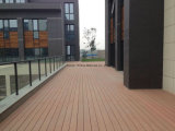 WPC Klassiek Parket Decking