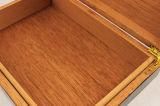 Caixa de charuto simples da madeira contínua