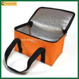 Bolsos al aire libre aislados modificados para requisitos particulares del refrigerador de la poder del bolso del almuerzo (TP-CB370)