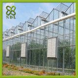 Estufa agricultural tropical do projeto moderno