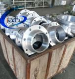 Steel di acciaio inossidabile Pipe Flange in Good Price