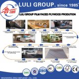 Film Faced Plywood From China Factory