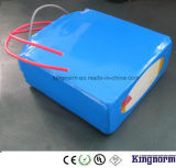 Profundamente 2000 baterías del polímero LiFePO4 del ion del litio de los ciclos 12V50ah