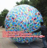 승진을%s Multicolors를 가진 팽창식 공기 풍선