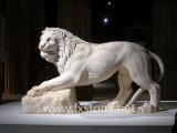 Leões de mármore brancos da porta (MAM-002)