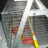 De Apparatuur van de Kooi van de Kip van de Laag van het Landbouwbedrijf van het gevogelte