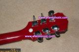 Mahogany гитара Afanti типа тела & шеи/Sg электрическая (ASG-216)