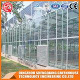 Serra di vetro del giardino dell'acciaio inossidabile