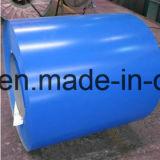 Vorgestrichene galvanisierte Ringe verwendet für Dach-Blatt
