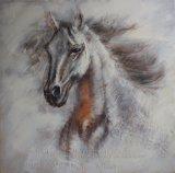 Tête-Pétrole de cheval peignant le modèle neuf