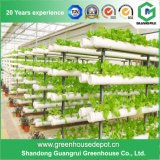 PE/PVC&#160 souple ; Greenhouse&#160 ; with&#160 ; Hydroponic&#160 ; Système