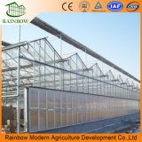 Serre chaude hydroponique de feuille de PC d'arrêt total de Simple-Envergure pour Angriculture/Aquaponics/Cucumber