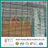 PVCは4X4 5X5の6X6によって溶接された金網の塀または金網のユーロの塀に塗った
