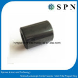 Anelli multipolari del magnete del magnete del ferrito di Permannet del cilindro per il motore facente un passo
