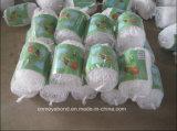 Сеть поддержки завода, сеть Анти--Птицы сада земледелия, чернит прессованное пластичное плетение
