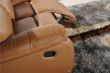 Meubles en cuir de l'Italie avec la fonction de Recliner