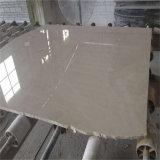 床のMicheliaアルバの大理石のイランの白い大理石の平板