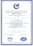 Sm-a-2000 permanent Magnetisch Heftoestel voor het Opheffen van en Vervoer van het Staal en het Ijzer