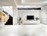 Tintenstrahl Wall Tile Floor Tile 300X600mm