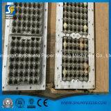 Bandeja do ovo do papel de máquina do sistema do Pulper do papel Waste que faz o preço da máquina