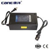 carregador de bateria acidificada ao chumbo profundo do carregador de bateria do ciclo de 12V 12ah