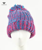 Winter Knitted Thinsulate Hat der Form-Dame
