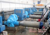 Bidding Double Suction Pump (SLOW1000)를 위한 1.4m Centrifugal Pump