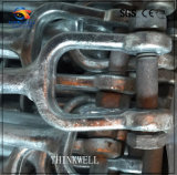 L'IMMERSION chaude de 5/8 pouce a galvanisé les boulons en acier modifiés de chape