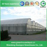 Serra pratica agricola della FIM della plastica