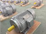 三相電動機を収納するイランの鋳造