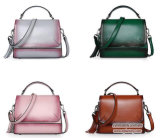 De beste het Verkopen Gradiënt van het Leer van de Handtas van de Vrouw van de Ontwerper van de Manier Modieuze Echte Dame Handbag Emg5028