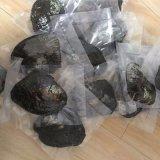 Устрица перлы высокого качества пресноводная в упакованном вакууме -