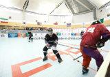 Superficie caliente del suelo de la venta para la superficie superficial del suelo de azulejo de la pista del hockey/del hockey