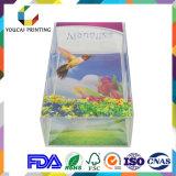 High End Emballage Visualisé PVC / Pet / PP Box avec Double Tailles Impression