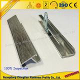 Het leverancier Aangepaste Frame van het Aluminium van het Profiel van de Uitdrijving voor Foto of Beeld