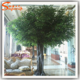 Albero di Banyan artificiale del Evergreen 12f per la decorazione domestica