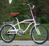 City Bike (ly2)熱い販売カーボン単一の速度の女性