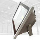 100W LED 램프 고품질 방수 번개 보호 옥외 LED 플러드 빛